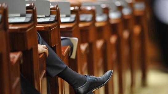 parlamentarroman